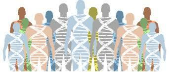 El primer cromosoma humano secuenciado se publica 2000 Comienza la era postgenómica