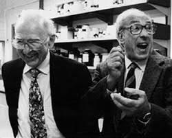 E. H. Fischer y E. G. Krebs descubren los mecanismos de fosforilación y desfosforilación reversibles de las proteínas.
