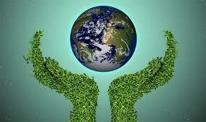 Reglamento de la Ley del Equilibrio Ecológico y la Protección al Ambiente del Estado de Morelos en Materia de Evaluación del Impacto y Riesgo Ambiental.