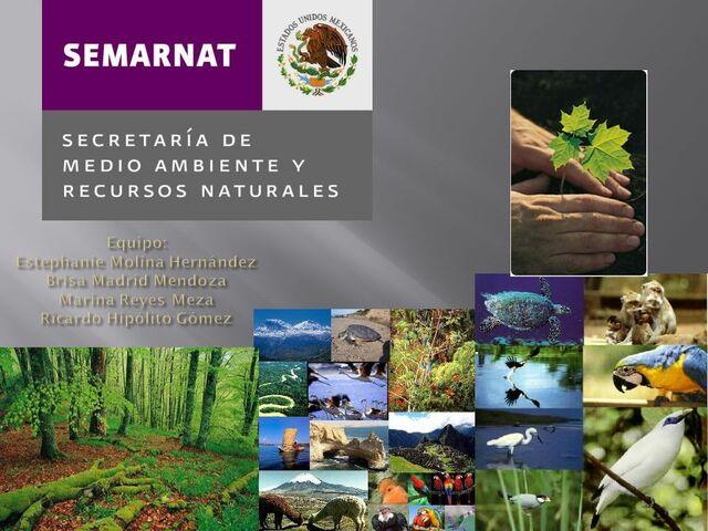 la Secretaría de Medio Ambiente y Recursos Naturales (Semarnat)