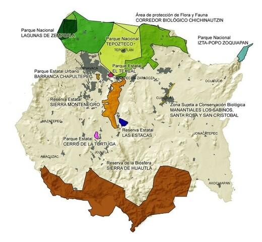 Ley del Equilibrio Ecológico y la Protección al Ambiente del Estado de Morelos.