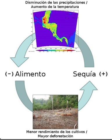 Caída de la Civilización Maya