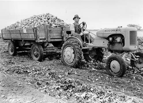 Farmers during WW2