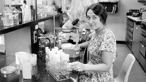 Lynn Margullis y la teoria de la simbiogenesis seriada