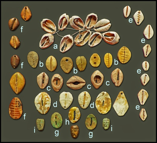 conchas usadas como monedas