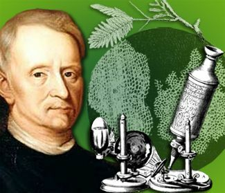 Robert Hook descubre la celula