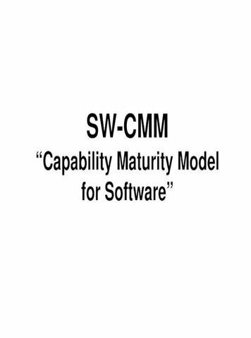 Versión 1.1 de SW-CMM