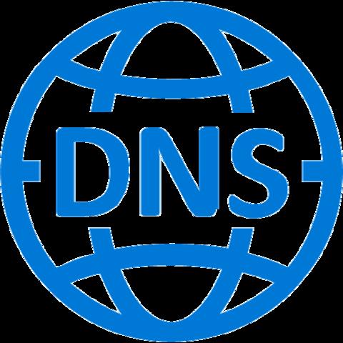 Introducción al dominio