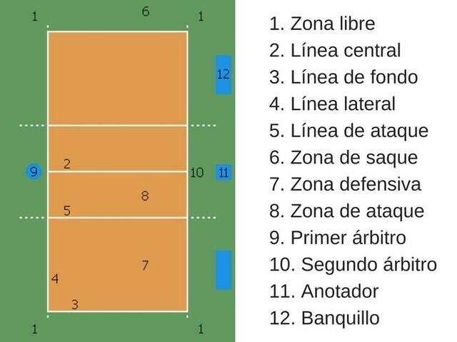 Se rediseñan las reglas de el voleibol enfocadas en el tamaño de la cancha
