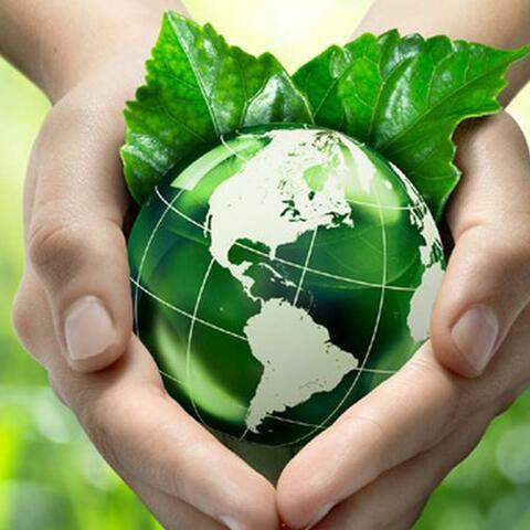 El ambiente: Desarrollo sostenible y sustentable