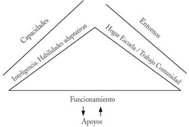 Modelo Teórico del Retraso Mental (AAMR)