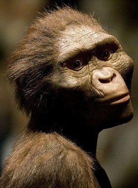 Australopithecus bahrelghazali.