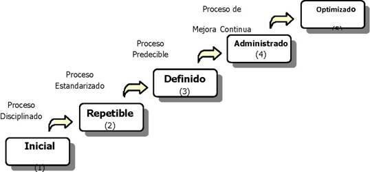 Modelos y líneas de productos