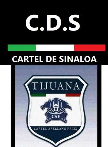 Alianza entre el Cártel de Tijuana y el Cártel de Sinaloa