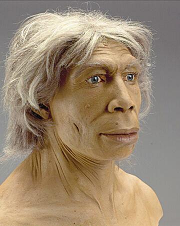 Homo sapiens neanderthalensis al Paleolític