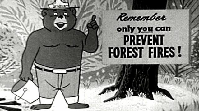 SMOKEY THE BEAR MAKES AIRWAVES