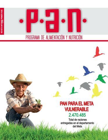 Diseño del Plan Nacional de Alimentación y Nutrición (PAN)