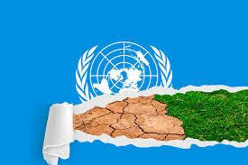 Cumbre COP 14 Cuarta Reunión del Protocolo de Kioto. Se trata de un foro para el debate político sobre el problema del cambio climático