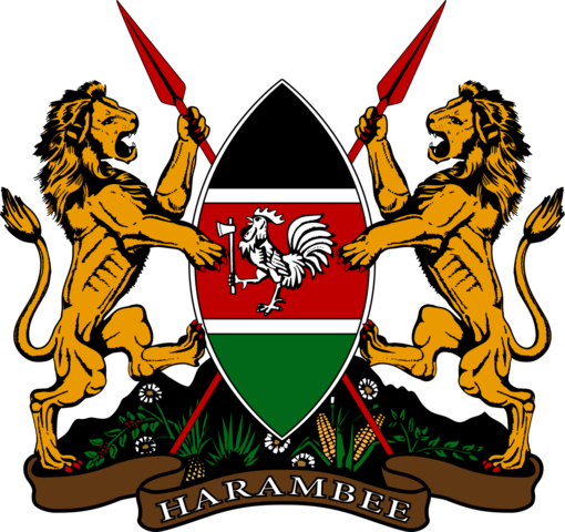 Kenya started a political party