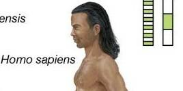 La Prehistoria: Homo Sapiens