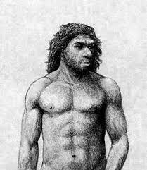 Característiques del Homo Neandertal.