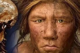 Homo Sapiens Sapiens.