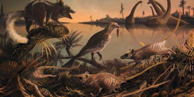 Primeros mamíferos - 200 MLN YRS AGO