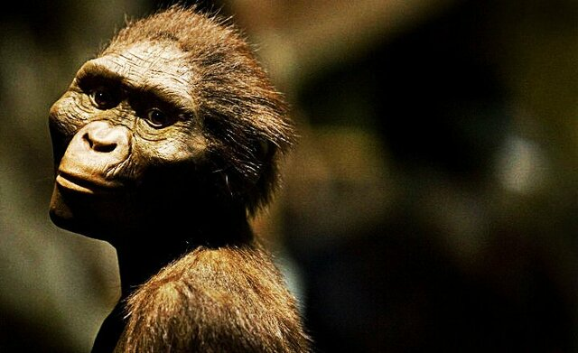 Australopithecus - 4 MLN YRS AGO