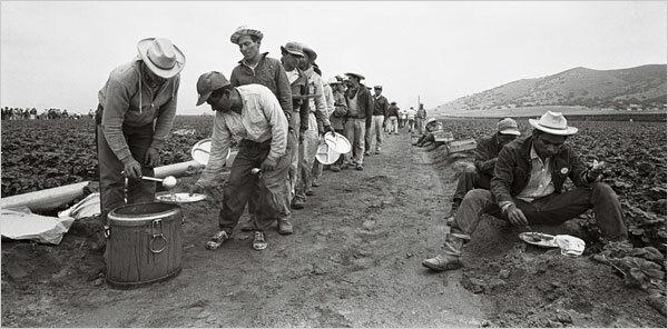 El departamento de agricultura estadounidense y el gobierno de México trabajaron de forma conjunta para otorgarles empleos a los braceros