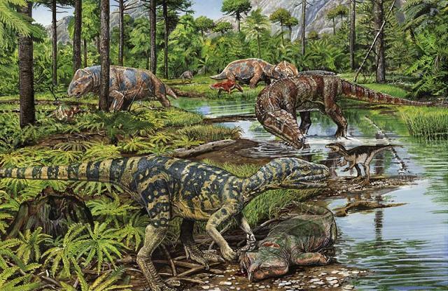 250 Millones de Años - Evolución de los Seres Vivos