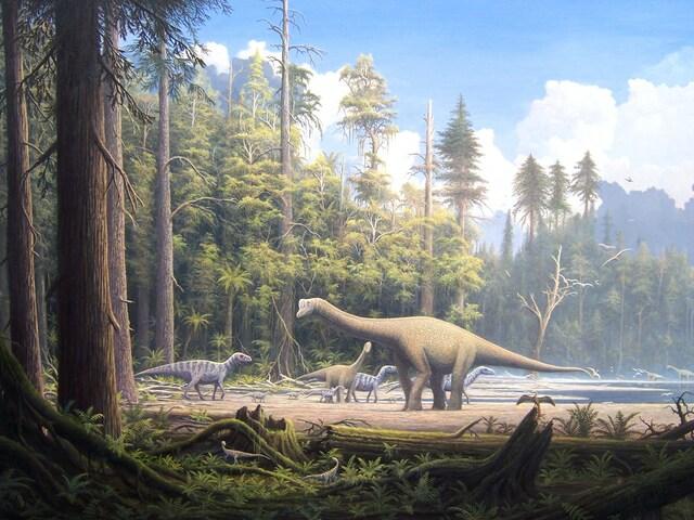 150 Millones de Años - Evolución de los Seres Vivos
