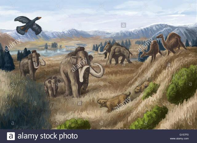 60 Millones de Años - Evolución de los Seres Vivos