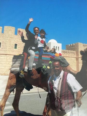 Amb camell