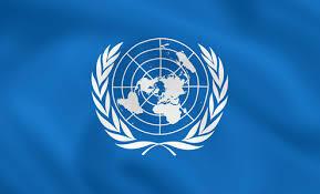 Entreda en la  ONU por parte España.