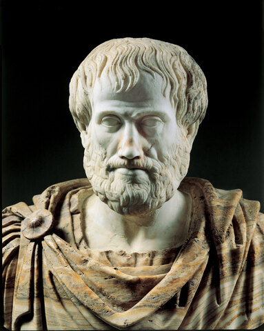 Questioning Aristotle