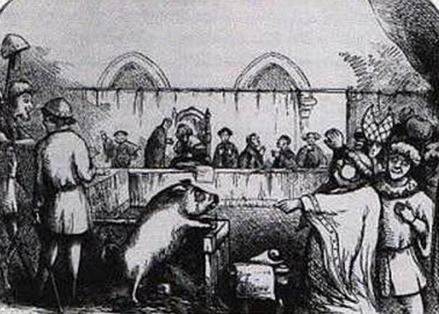 Se domestica el cerdo en Europa