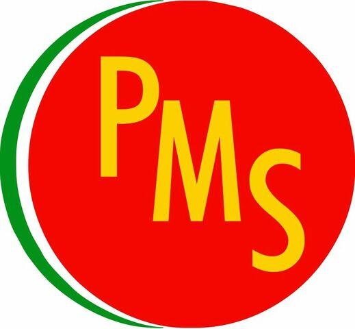 De PSUM a PMS