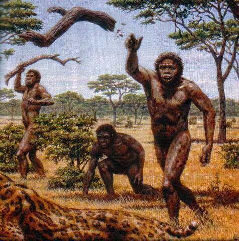 Australopithecus (3.000.000 a.C)