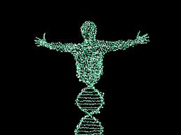 la genética de poblaciones