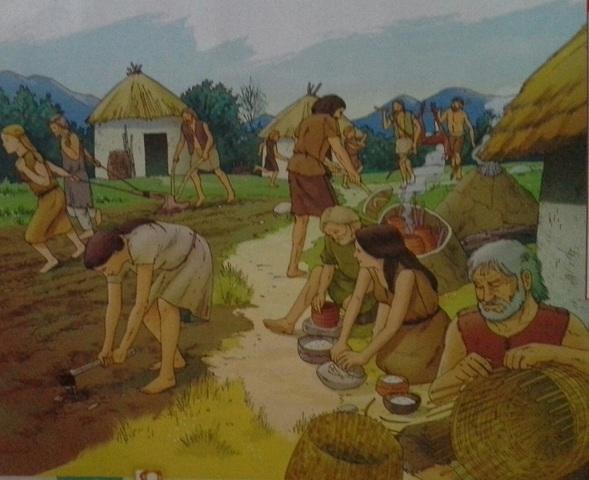 comença el neolitic