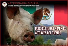 PORCICULTURA MEXICANA