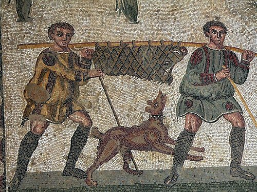 Utilización del cerdo por los conquistadores.