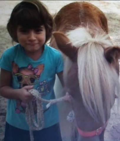 el meu primer poni