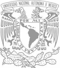 La UNAM, por medio de la Escuela de Graduados organizó cursos para especialistas en Psiquiatría y en Psicoanálisis.
