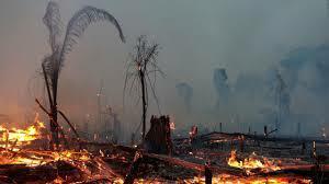 Incendi Amazones