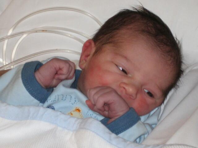 Naixement Berta