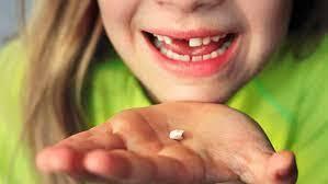 Quan s'em va caure el meu primer dent!