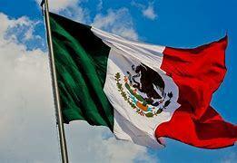 Porcicultura Papel Importante en México