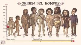 HISTORIA DEL HOMBRE timeline