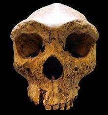 400.000 años